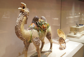 Joint Exhibition of Asian Civilizations (Artifact Exhibition Series)